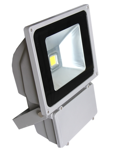 COB 100w led flood light with competitive price